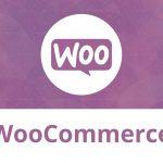 WooCommerce SEO: hướng dẫn 2021