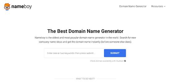 Cách chọn tên miền tốt nhất (14 mẹo và công cụ)