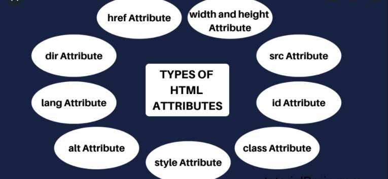 Tự học html: Tìm hiểu về HTML